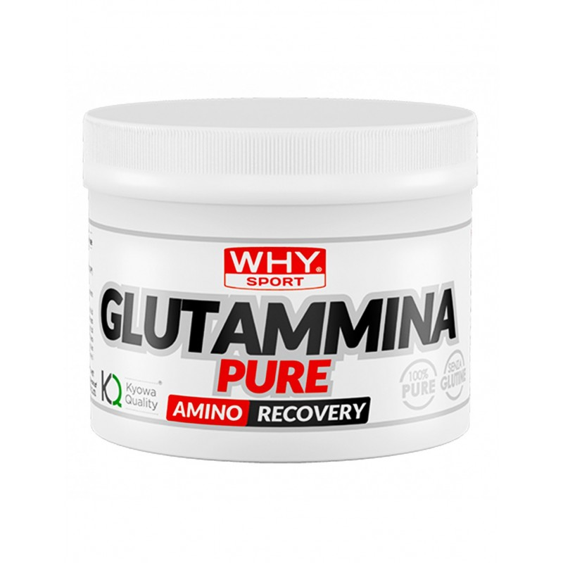 WHY SPORT L-GLUTAMMINA250G