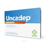 UNCADEP AEROSOL 10FIALE2ML