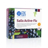SALIX ACTIVE-FLU ARAN 12BS